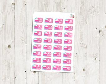 Birthday Countdown Stickers - ECLP Stickers