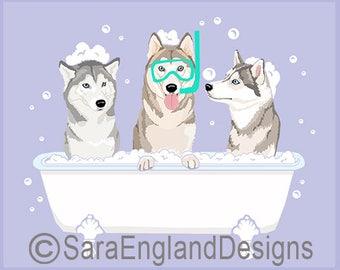 Spa Day - Siberian Husky