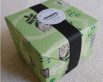 Hoppy Mini Box Map Series 4713077970652 Plant 2