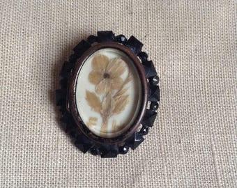 XIX's medallion brooch