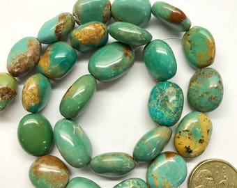 Turquoise smooth nuggets.