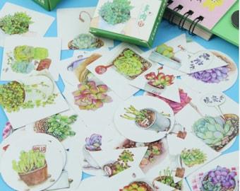 40 Pcs Succulent Sticker Set/Cactus/Planner Sticker/Journal/Craft Supplies/Scrapbooking/Card Making/Tags