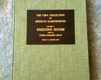 Ciba Collection Volume 3 Digestive System Part II Frank H Netter Anatomy Drawings Medical Painting Medical Illustrations Medical Book