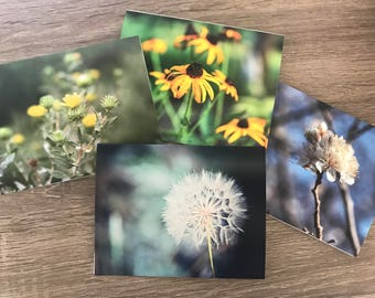 Nature Note Cards - Set of 4