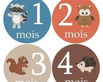 Autocollants FRANÇAIS pour la croissance de bébé, Stickers Garçon fille,  Animaux de la forêt, cadeau de shower, hiboux, raton,  F120