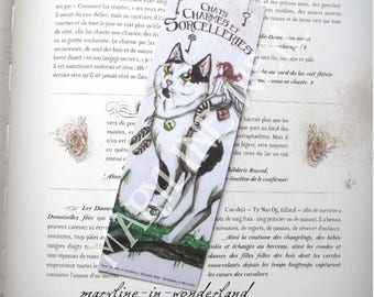 black and white cat bookmark and fairy