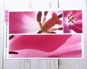 Pink Tulip planner stickers | pink tulip 01 photo stickers | full box planner stickers | pink rose stickers | vinyl matte stickers |