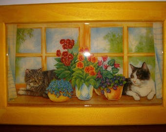 Great frame for cat lovers
