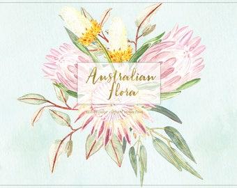 Australian flora. Arrangements, wreaths, header. Watercolor clipart, Digital clipart hand drawn. Eucalyptus, protea, grevillea, banksia.