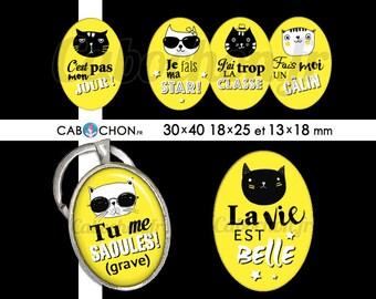Humeur de Chat ll • 45 Images Digitales OVALES 30x40 18x25 13x18 mm digital sheet chat cat dechire super cabochon badge bijoux