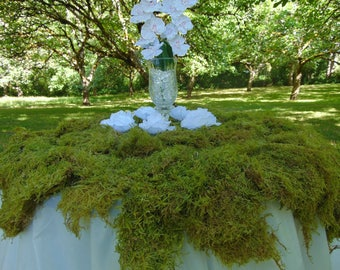 7# Pound case of bulk sheet moss (25-30 Sq. Ft.)  floral wedding arrangments moss wreath bales woodland wedding backdrop floral supplies