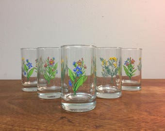 Five Colorful Floral Juice Glasses by Crisa