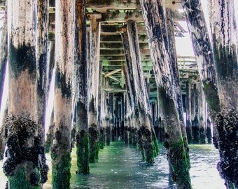 "Wall Art, ""Under the Pier"", Capitola, Capitola Wharf, Beach, Pier"
