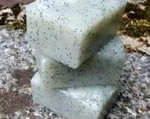 Cactus and Sea Salt Solid Sugar Scrub Bar - All Natural Handmade Vegan with Avocado Oil and Cane Sugar