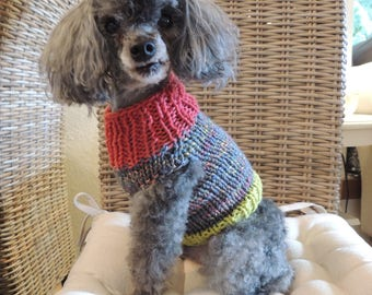 Knit Puppy Sweater, XS Puppy Sweater, Dog Sweater, Luv Beanies, Dog Coats, Tiny dog sweaters, Photo props for dogs,