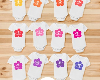 Monthly Onesies for Baby's First Year - Dozen Bodysuits - 1-12 month onesies - Cloud Monthly Onesies - Baby Shower Gift - Dream Onesies