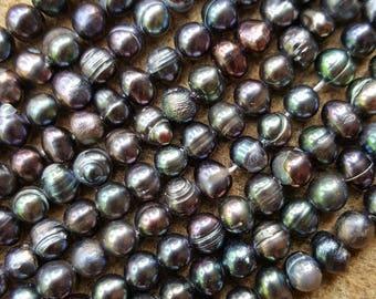 "Freshwater 5x6mm Semi-round Pearl Bead Strands, Midnight Blue- 14.1"" Strand"