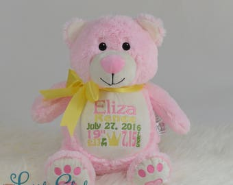Personalized Stuffed Animal, Personalized Bear, Birth Stats Animal, Embroidered Stuffed Animal, Birth Announcement, Embroidered Animal, Pink