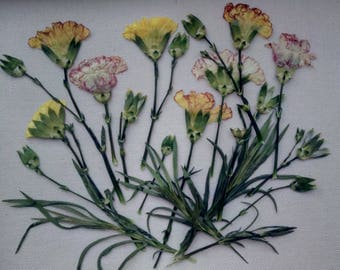 Real Leaf Botanical Herbarium Accessories Floral Craft Scrapbooking Pressed Dried flowers Set for carpets Dry  for making Jewelry designe