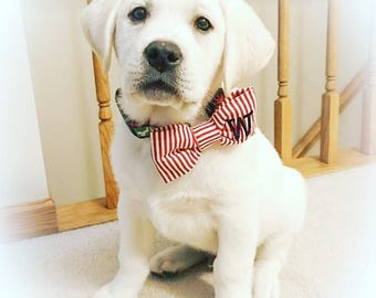 Valentine Dog Bow Tie Red & White Stripes || Personalized Puppy Bow || Custom Pet Gift by Three Spoiled Dogs