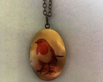 Robin red breast locket necklace