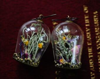 Terrarium jewelry, Real moss, Flower earrings, Wild flowers,Romantic jewelry, real flower earrings, fairy garden, boho jewelry,gifts for her