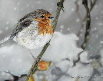 Winter Robin, an original pastel artwork by Amanda Smith-Mitchell