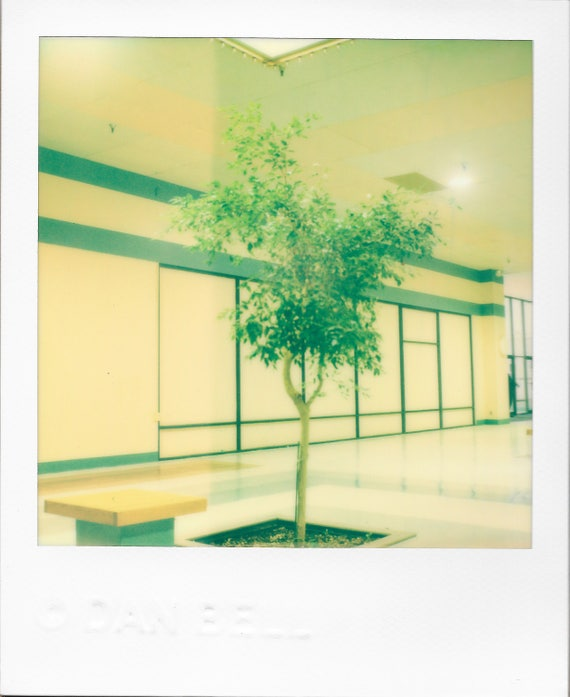 mall 1975