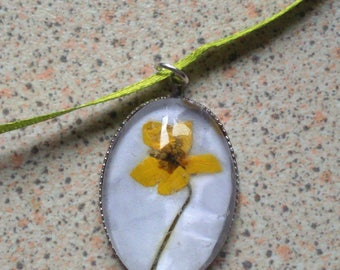 Real Pressed Flower Necklace- tormentil, yellow, cinquefoil, septfoil