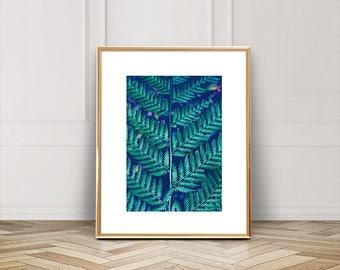 Fern Printable, Wall Art Printable, Printable Wall Art, Fern Art Print, Fern Leaf Printable, Fern Wall Art Printable, Nature Printable 057