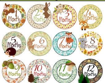 Forest Animal Baby Month Stickers Baby Shower Monthly Baby Stickers Milestone Sticker Woodland Baby Month Stickers Iron on INSTANT DOWNLOAD