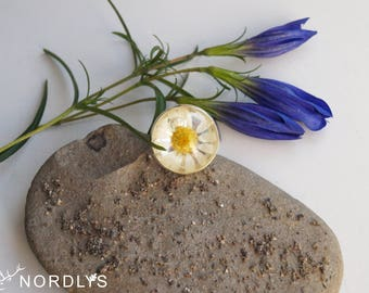 Real flower daisy ring Natural flower Hemisphere ring with white daisy tender flowers under epoxy resin Real plant jewelry Eco