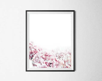 Pink flower print, hydrangea print, flower photography, Botanical print, plant print, nature photography, floral photography, gift for her
