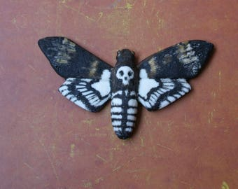 "Refrigerator magnet ""Death's - head hawkmoth"". ""Sphinx moth"" fridge magnets"