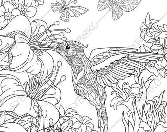 Hummingbird Animal Coloring Pages. Hummingbird  3 Coloring Pages Animal coloring book pages for Adults Instant Download Print Etsy