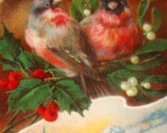Nice Vintage Christmas Glep Postcard (Robins/Birds)