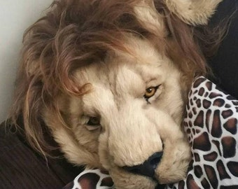 Faux realistic Lion Headdress, Rug, Shawl, Prop