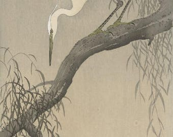 "Japanese Art Print ""White Heron on Tree Branch"" by Ohara Koson, woodblock print reproduction, fine art, asian art, cultural art, birds"