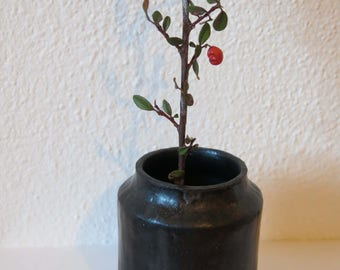 Vase, Black