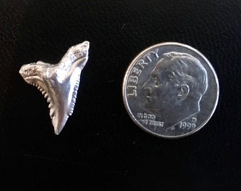 Shark Tooth Casting in Sterling Silver