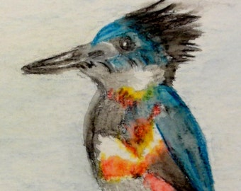 Belted Kingfisher Watercolor Painting, Original Painting, US Bird Art, A7 Painting