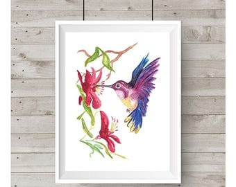 Colorful Hummingbird Watercolor