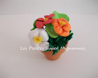 Miniature: mini flower pot, capucine