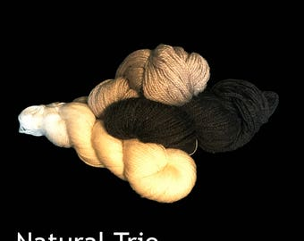 All Natural Undyed 100% Wool DK Weight Yarn