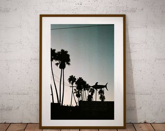 Palm Tree Silhouette Print