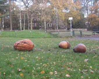 Wooden Seed Sculptures