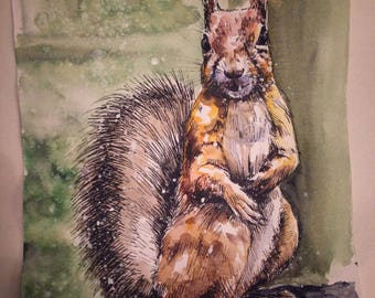 Squirrel (original painting)
