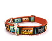 """1"""" Mixed Tape buckle or martingale dog collar"""