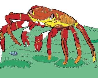 crab illustration art print
