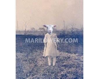 Creepy Cute Lamb Art Anthropomorphic Animal in Clothes 5x7 Inch Collage Print, Weird Wall Decor, Small Wall Art
